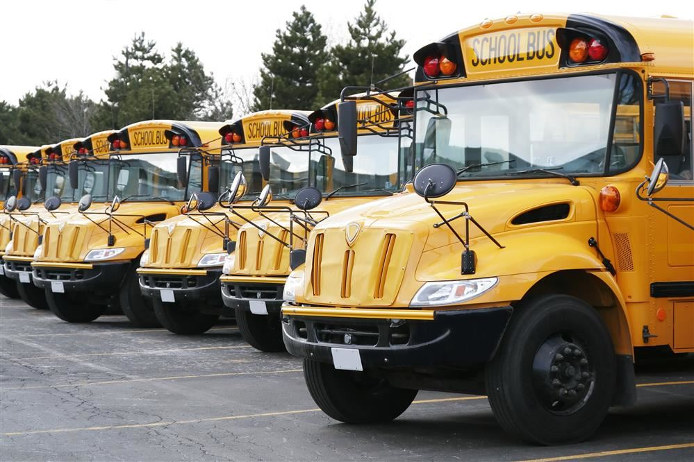 School buses parked side by side in a long row